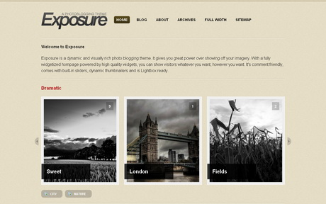 Exposure - тема Wordpress