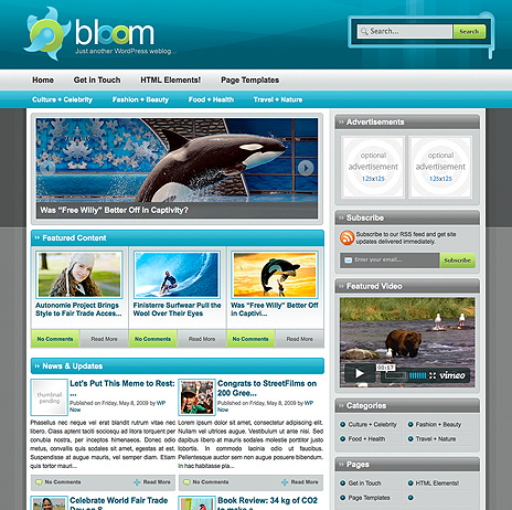 Bloom - тема Wordpress